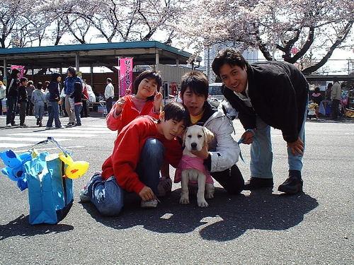 さくら祭り(1)